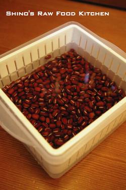 Soakingazukibeans