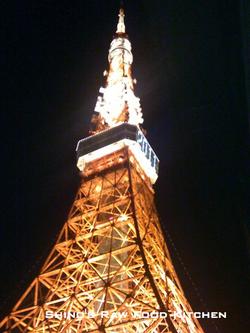 Tokyotowerafterdark_2