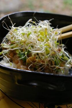 Nattowithsprouts_2