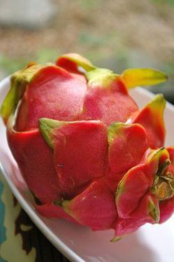 Dragpnfruits