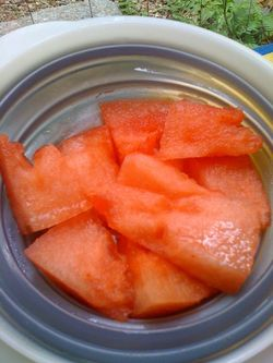 Watermelonsoup1