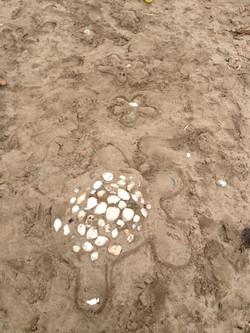 Sandcathtle