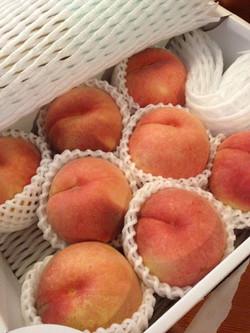 Peachesfromyamguchi_2